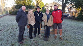 Major Oak tree planting