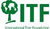International Tree Foundation Logo