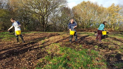 Three volunteers sow seeds at Bramcote Ridge