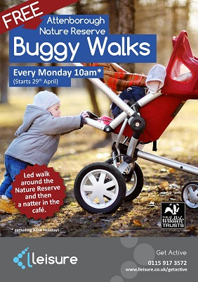 Free Attenborough Nature Reserve Buggy Walks Poster
