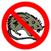 Pests and Infestations Icon
