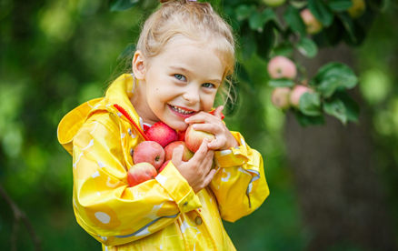 Little girl with some apples