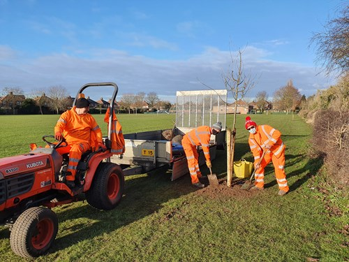 Trees being planted at Leyton Crescent Recreation Ground